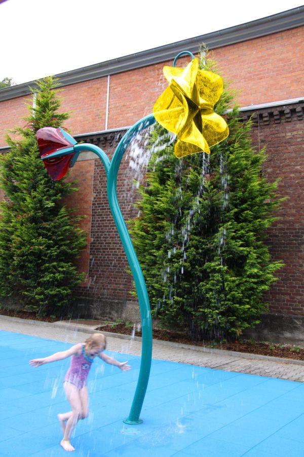 Wasserblume mit Bluetenwasserrad2BSpruehblume 5332 ret I
